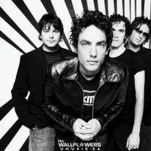 Wallflowers Lyrics